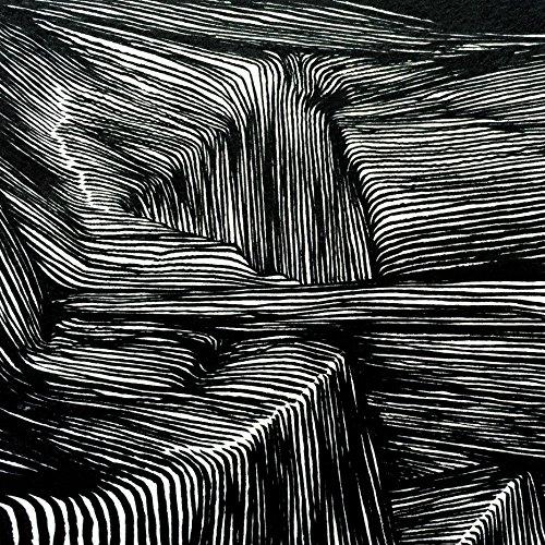 magnetic-bodies-maps-of-bones-lp