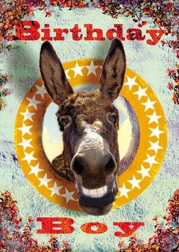 Birthday Boy Laughing Donkey Greeting Card By Max Hernn Amazon