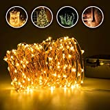 Copper Wire Lights, Elebor Waterproof 20M/ 66Ft 200 LED Fairy Lights- Battery Operated Warm White String Lights for Christmas, Indoor&Outdoor, Wedding, Party, Garden, Festival