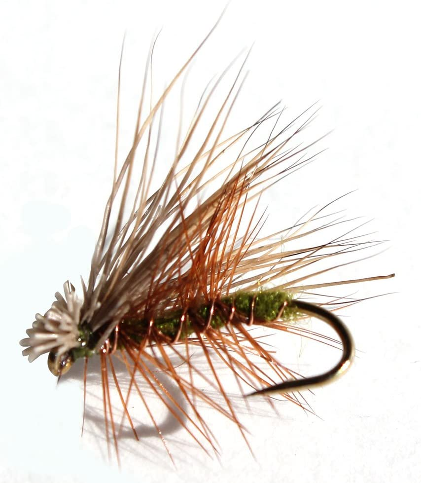 Olive Caddis Trout Dry Fly 1 Dozen
