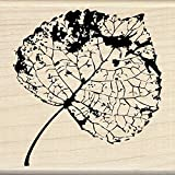 Inkadinkado 60-01103 Birch Leaf Wood Stamp, Black