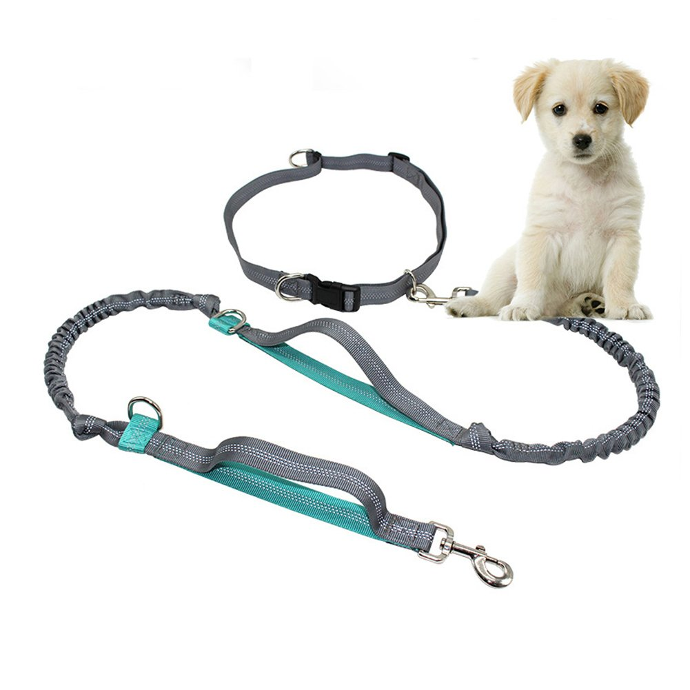 Pupet Hands Free Dog Leash, Retractable Dog Leashes Dual Handle Extra Long Running Dog Leash with Adjustable Waist Belt for Walking Running Hiking Jogging (Blue)