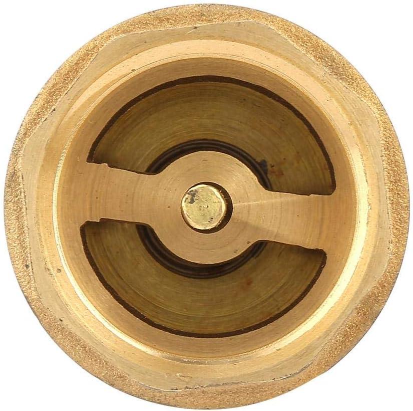 Lat/ón Unidireccional Sellado Rosca hembra V/álvula de pie Malla V/álvula de retenci/ón Alta resistencia con agujeros Filtro de filtro DN25 Resistencia al envejecimiento