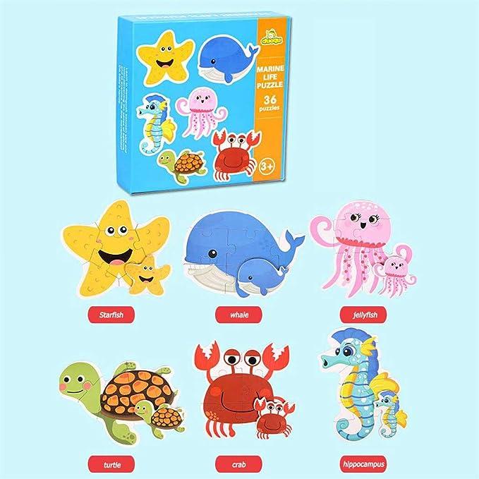 Amazon.com: Coedfa Toys Education Toys Infant Baby Kids Card ...