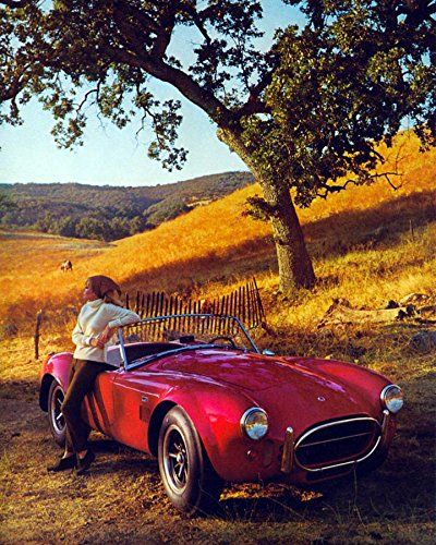 1966 Ford Shelby Cobra 427 Factory Photo