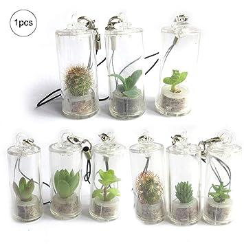 Ouken 1PC Llavero suculenta Miniatura con la Naturaleza del terrario suculenta Llavero usable Llavero (Color al Azar)