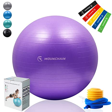 Mounchain Exercise Ball Yoga Ball with 5 Pcs Resistance Loop Exercise Bands Stability and Anti- Burst Exercise Equipment (Purple)