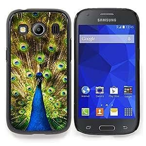 """Qstar Arte & diseño plástico duro Fundas Cover Cubre Hard Case Cover para Samsung Galaxy Ace Style LTE/ G357 (Peacock coloridas plumas de cola Selva Big Bird"""")"""