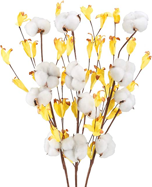 HUAESIN 3pcs Ramo de Flores Secas Algodon Naturales Blancas Rama ...
