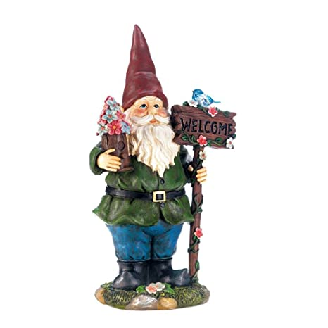 Merveilleux Amazon.com : Summerfield Terrace Solar Garden Statues, Bluebird Gnome  Welcome Small Lawn Solar Yard Figurines : Garden U0026 Outdoor
