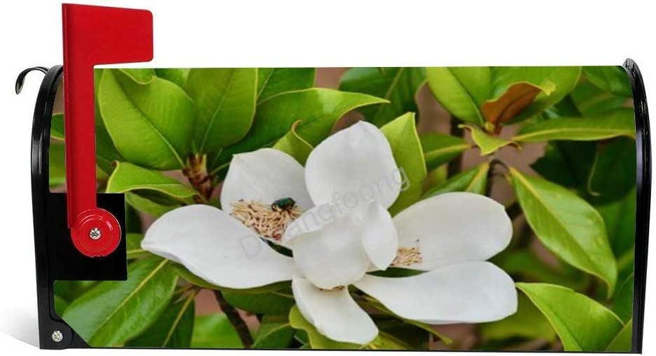 Diuangfoong Magnolia Magnetic Mailbox Cover Fits Standard Size 6.5 ...