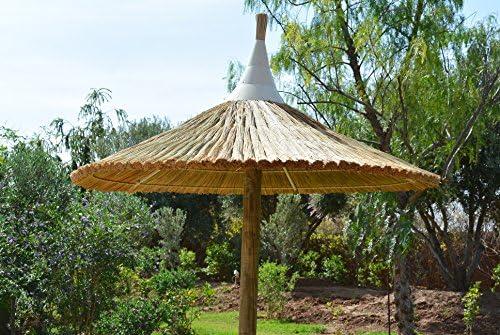 Ombrelloni Di Paglia Vendita.Brindombre Ombrellone In Paglia Amazon It Giardino E Giardinaggio