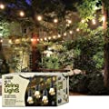Feit Outdoor Weatherproof String Light Set, Black, 48 ft, 24 Light Sockets, Includes 36 Bulbs