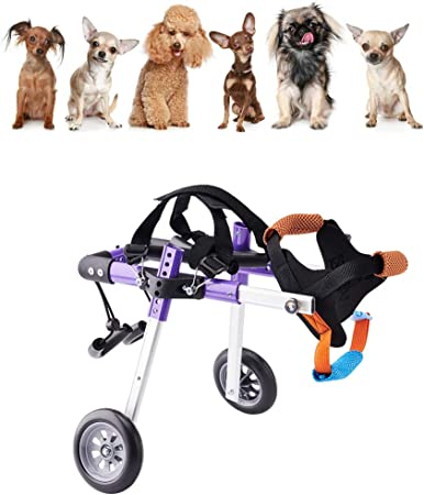 1 pezzi sedia a rotelle cane regolabile per riabilitazione