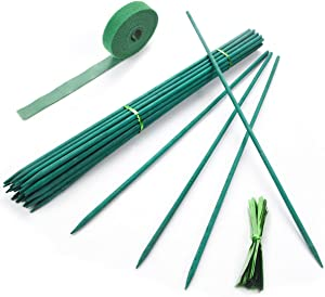 Qefuna 30PCS Diameter 17 Inches Green Wooden Garden Stakes, Sticks for Plants Support,Decorative Wood Stakes for Plants Bamboo Sticks,Sturdy Floral Picks with Garden Tie and Nylon Plant Tie