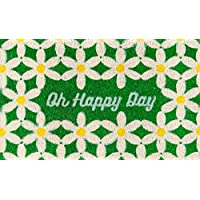Novogratz Aloha Collection Oh Happy Days Doormat, 16 x 26, Green