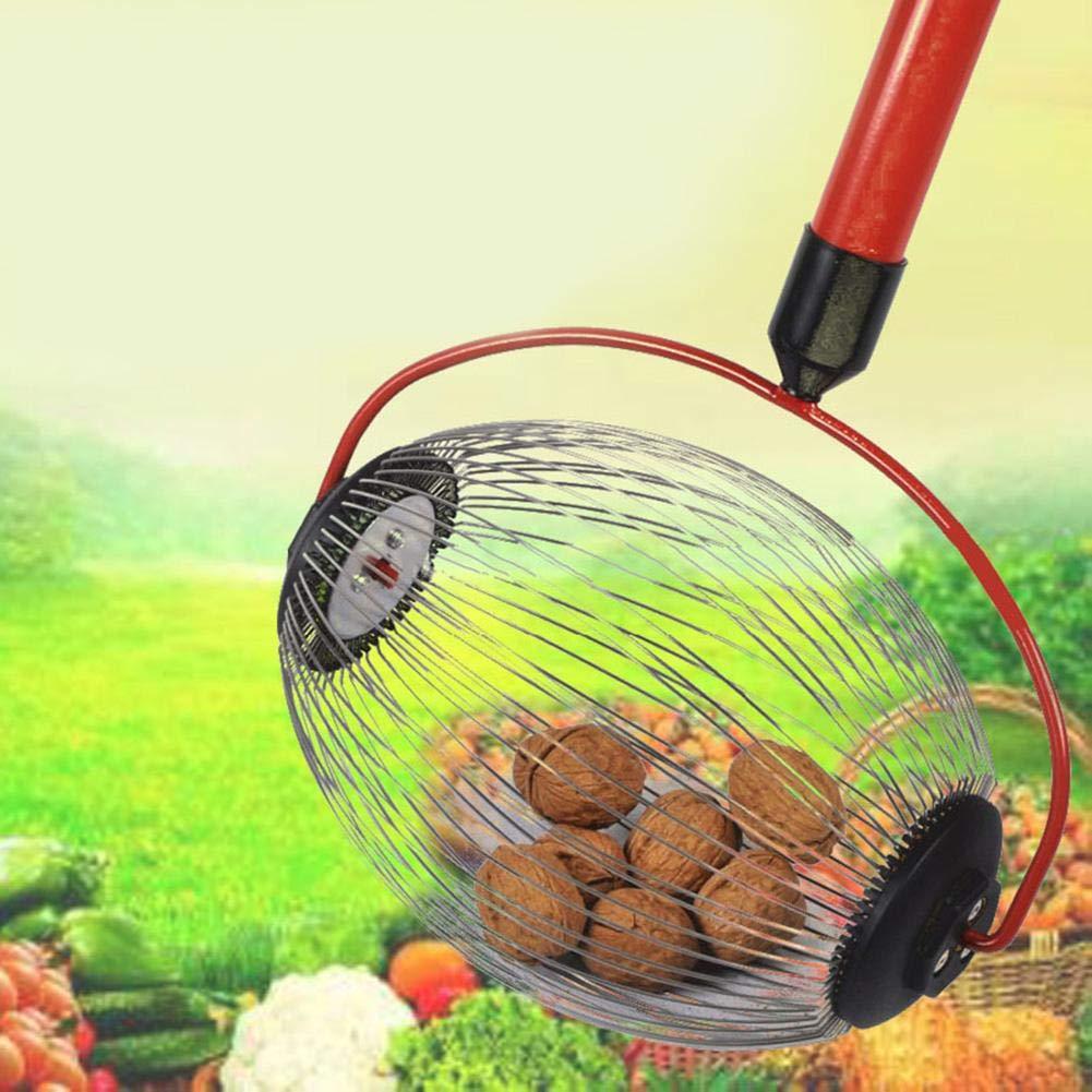knowledgi Recogedor de Nueces,Recogedor De Bolas De Frutas Roll In con Mango Telesc/ópico para Uso En Huertos Familiares