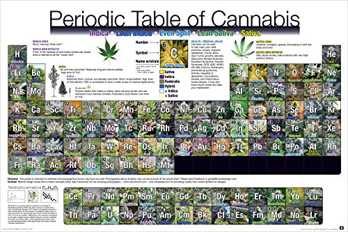 Periodic Table of Cannabis Weed Marijuana Table Novelty Drug Smoking Humor Poster Print Unframed