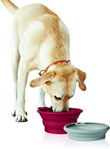 Pet Parade - Pop-up Food & Water Bowl Set - Travel Friendly Pet Bowl - Collapsible & Interlocking Design - for Water and Food - Portable Use, Multi