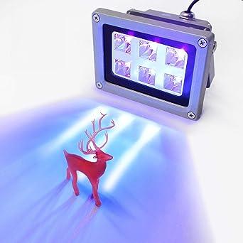 Amazon.com: Luz de curado de resina UV 405nm de resina UV ...