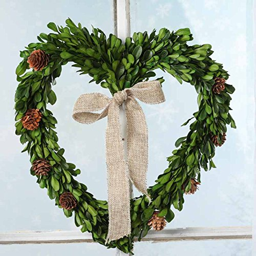 Factory Direct Craft Preserved Boxwood Leaf Heart Wreath With Mini Pinecones Throughout (Mini Wreath Heart)