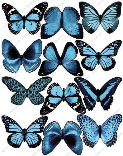 Cakeshop 12 x PRE-CUT Light Blue Edible Butterfly