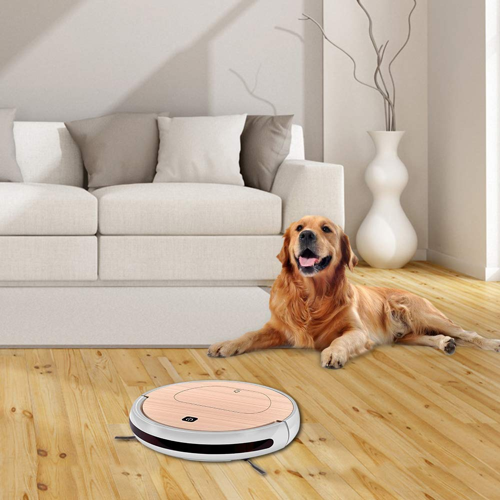 FENGRUI FR-6S Robot Vacuum Cleaner and Mop Powerful Suction Remote Control HEPA Filter for Pets Dog Hair Hardwood Floor Surfaces Home Gold by FENGRUI (Image #9)