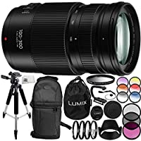 Panasonic Lumix G Vario 100-300mm f/4-5.6 II POWER O.I.S. Lens 14PC Accessory Bundle – Includes Manufacturer Accessories + 3 Piece Filter Kit (UV + CPL + FLD) + MORE