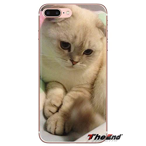 Inspired by Scottish Fold Phone Case Compatible WithIphone 7 XR 6s Plus 6 X 8 9 Cases XS Max ClearIphones Cases High Quality TPU- Book Gifts Ears Art Royal Dog- 1000008660294 Tcup Outfits