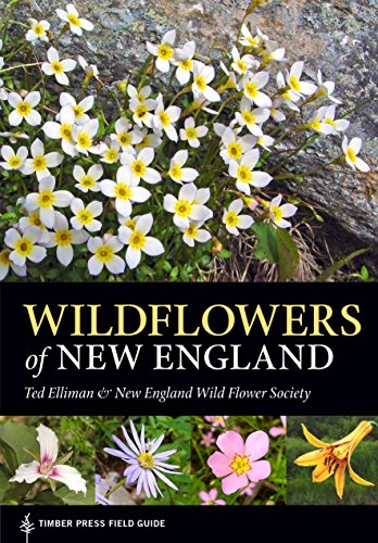 Wildflowers of New England: Timber Press Field Guide (A Timber Press Field Guide)