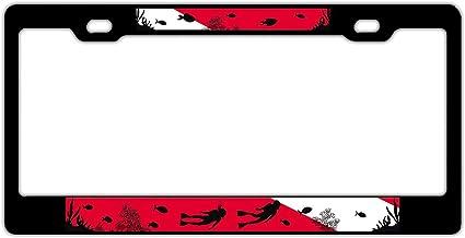 Universal Aluminum Metal License Plate Frame,