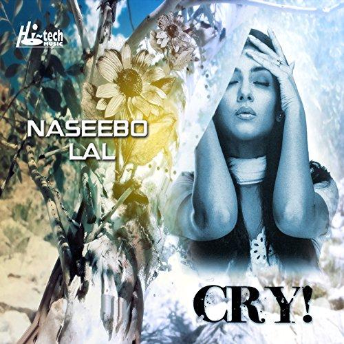 Rusya Na Kar Soniya Song Download: Amazon.com: Rondi Koteyon Punjab: Naseebo Lal: MP3 Downloads