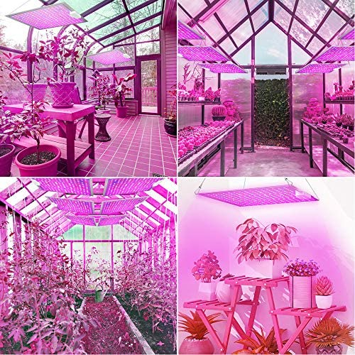 Roleadro Led Grow Light, 2020 Latest RL1000 Plant Light with IR, High PPFD Rating Full Spectrum LED Grow Lights for Indoor Plants Veg and Bloom, Plant Growing Lamps to Cover a 2x2 feet Flowering Space