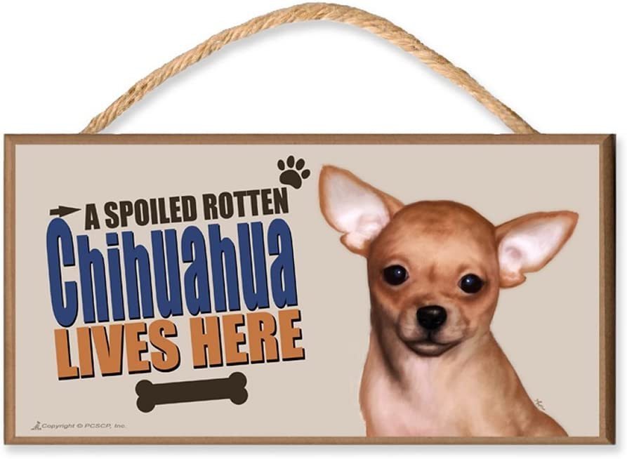 """Spoiled Rotten Chihuahua Lives Here Sign 5/"""" x 15/"""" Plaque Gift pet dog"""