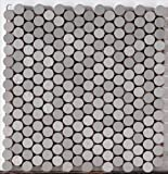Brushed Stainless Steel with Ceramic Base 12 x 12 Mesh