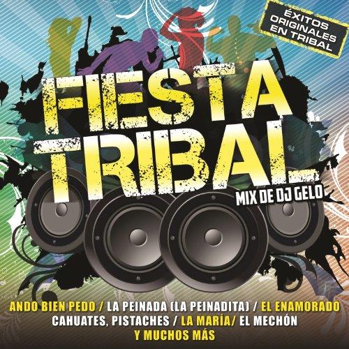 Tribal 2013 lo mas nuevo mp3 download