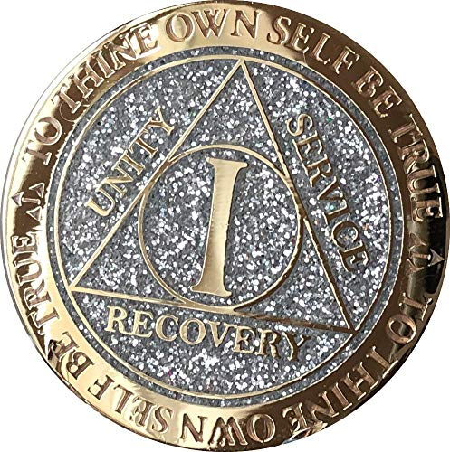 - 1 Year AA Medallion Reflex Silver Glitter Gold Plated Color Chip