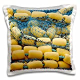 3dRose pc_190719_1 USA, Alaska, Hoonah. Close-up of Commercial Fishing net and Floats.-Pillow Case, 16 by 16''