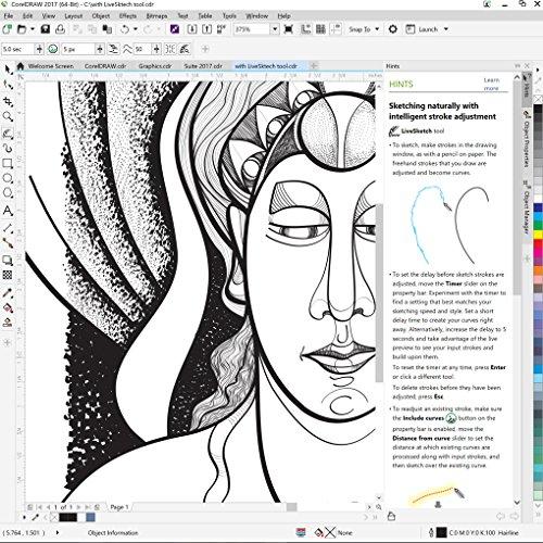 coreldraw graphics suite 2017   amazon exclusive