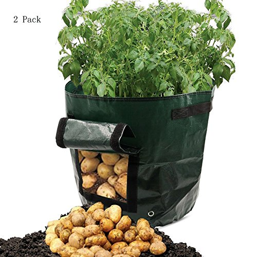 Potato/Carrot/Onion Grow Bags with Handles, 7 Gal Qty 2