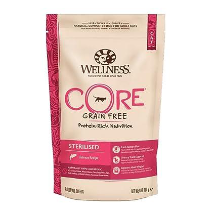 WELLNESS CORE - Salmón esterilizado para Comida de Gato sin Grano seco, 300 g