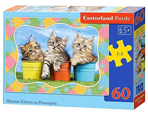 "Castorland ""Siberian Kittens In Flowerpots"" Puzzle (60 Piece)"
