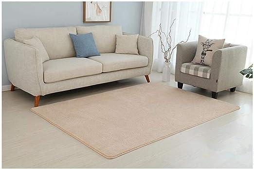 Amazon.com: Area Rug Microfiber Rug Living Room Bedroom Area ...
