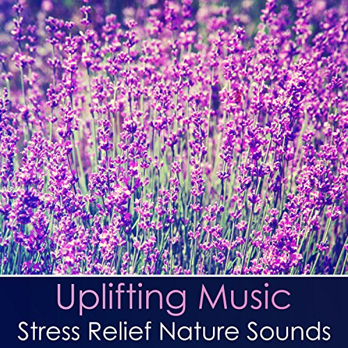 Healing Power (Asian Soothing Violin ()