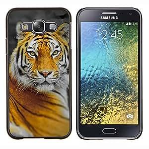 KLONGSHOP // Cubierta de piel con cierre a presión Shell trasero duro de goma Protección Caso - Tigre del gato grande de la selva Naturaleza Naranja Amarillo - Samsung Galaxy E5 E500 //