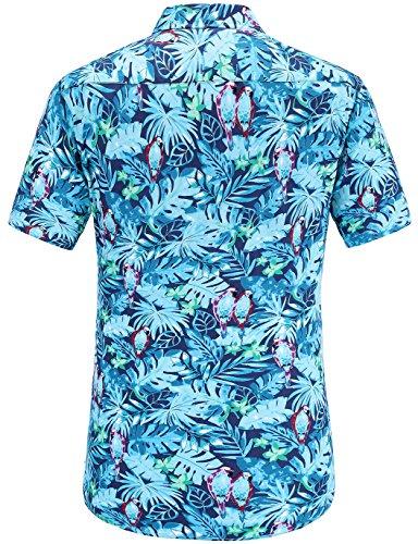 Azul Hombre Para Jeetoo Casual Camisa bluebird Clásico wXXU0a