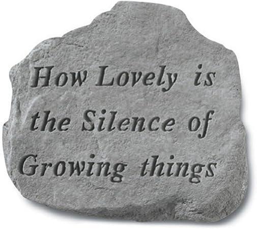 Kay Berry Inc Stepping Stone- cómo Lovely es el Silencio: Amazon ...