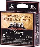 Crosman Benjamin Discovery .22 Caliber 400 Pellet Assortment Sampler