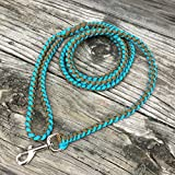 Paracord HD Rope Dog Leash - 6 Feet - Strong & Durable - Medium & Large Dogs - Turquoise & Coyote Brown