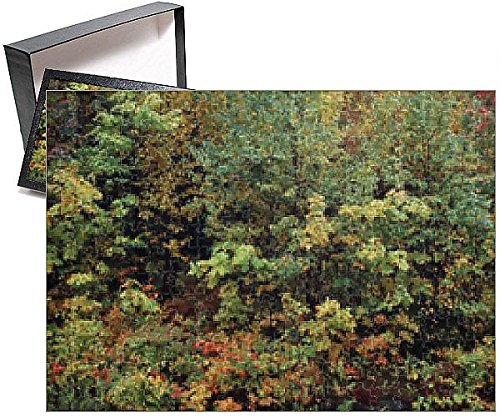 Photo Jigsaw Puzzle of USA, Vermont, Northeast Kingdom, Fall Foliage